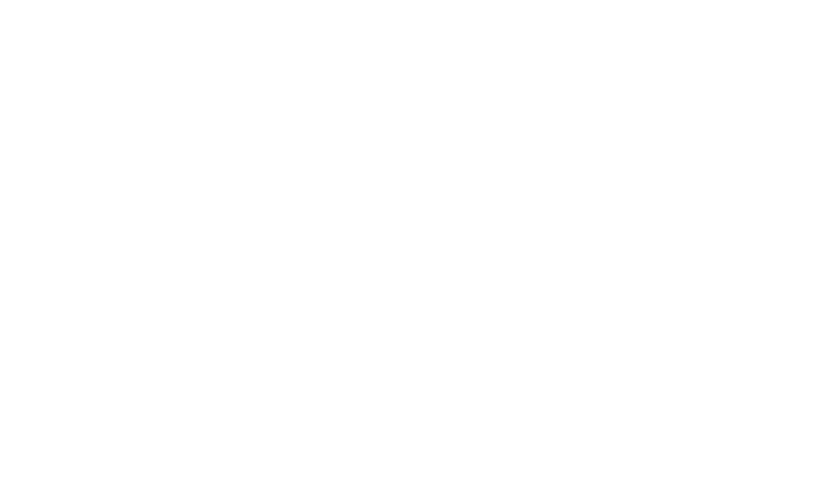 Strength Through Partnership Handshake