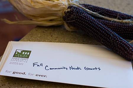 Fall Community Needs Grants 2016