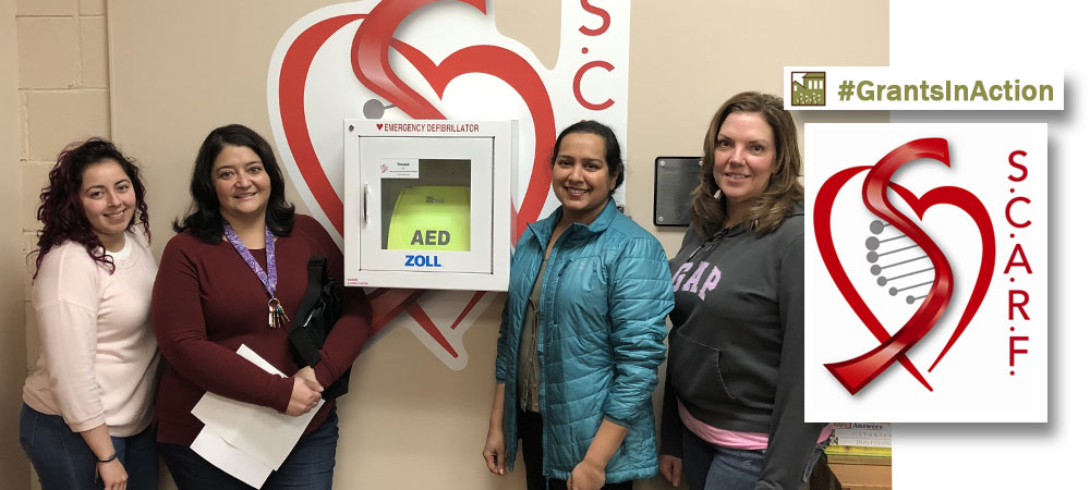 Community Needs Grant, DeKalb County Community Foundation, Grants In Action